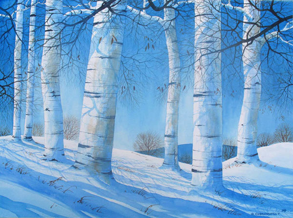 winterblue-birch-educed
